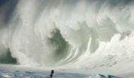 Волна Мэверик – мечта или ужас серфера?
