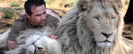 Видео путешествие в ЮАР