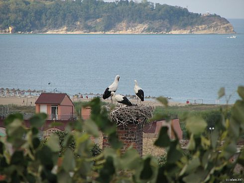 Город Обзор. Морской курорт Болгарии.