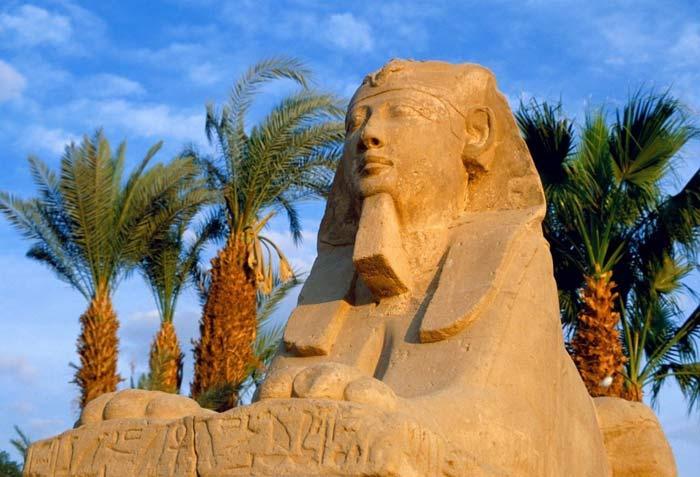 Тур поездки в Египет