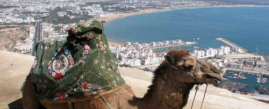 Агадир, Марокко. Африка зовет!
