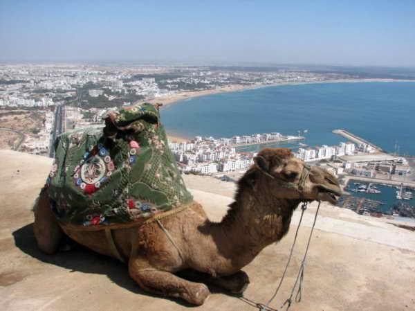 Курорт Агадир в Марокко