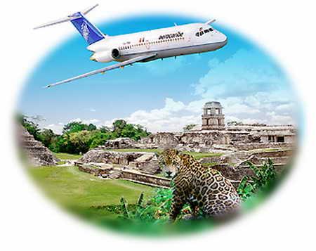 Поиск авиабилетов авиакомпании