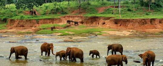 Достопримечательности Шри-Ланки